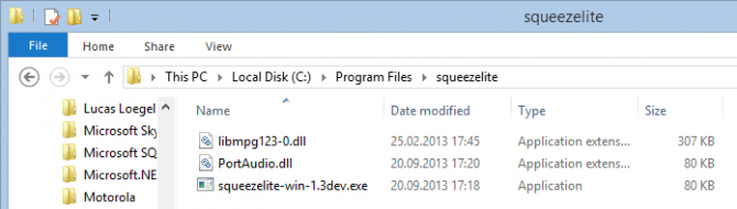 squeezelite_folder